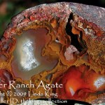 Walker Ranch Agate