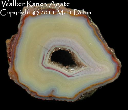 Agate from Walker Ranch
