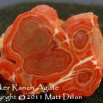Agate - Walker Ranch