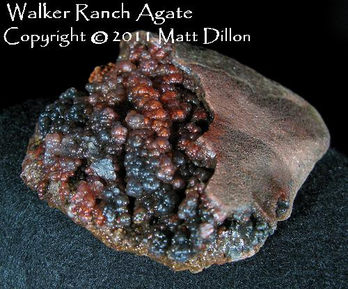 Plume Agate Nodule - Walker Ranch